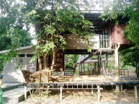 A Shipping Container Home in Krabi Thailand 1